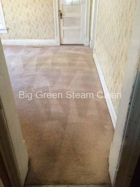 carpet-cleaning-logan-ut-after-2