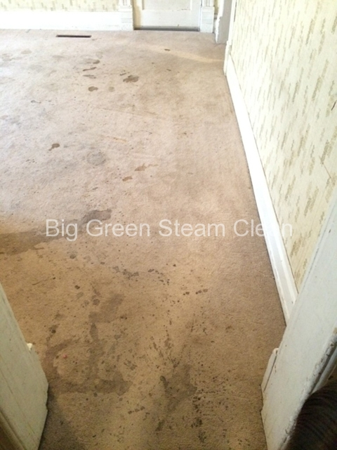 carpet-cleaning-logan-ut-before-2