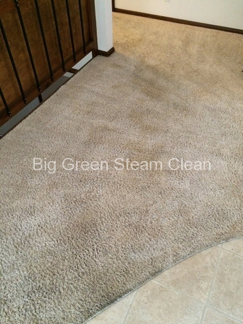 carpet-cleaning-logan-ut-before-photo-1